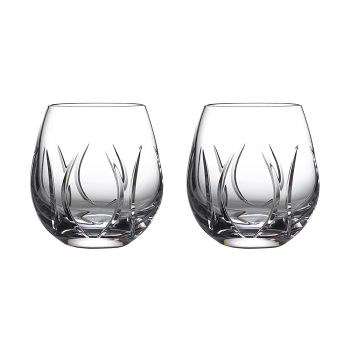 Ardan Tonn Stemless Wine Pair