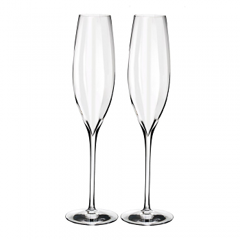 Elegance Optic Classic Champagne Flute Pair