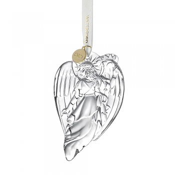 Annual  Angel